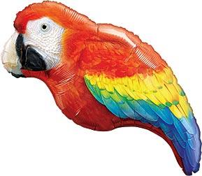 luau parrot